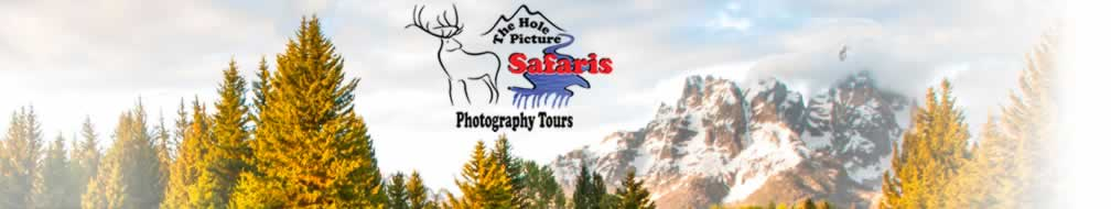 Grand Teton Photography Workshops and Tours